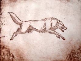 Etching - Leaping Wolf by Kuuda