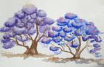 Colour Harmonies - purple