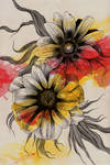 Gazania Rigens by KissMyArt-Artcore