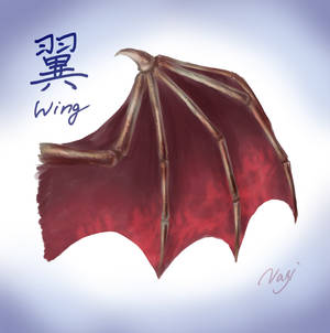 Wing of a creature