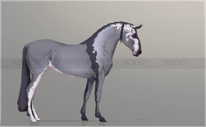 Auction horse adopt #4 [CLOSED] by Limbosst