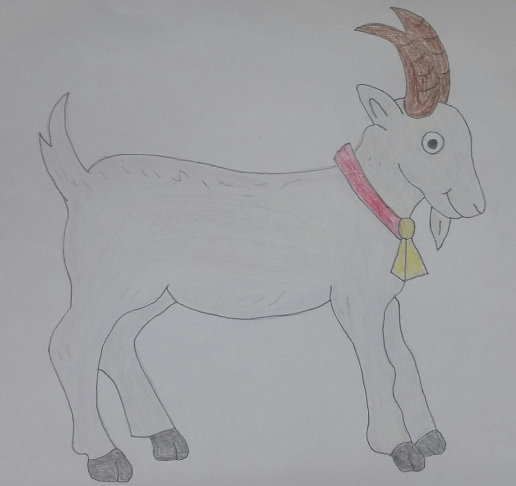 Drawing of a Goat by jcpag2010 on DeviantArt