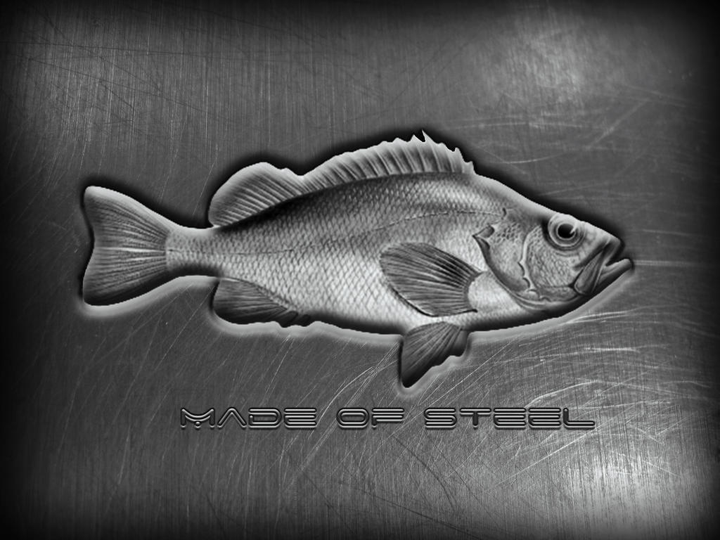 metall Fish1 by rvs51