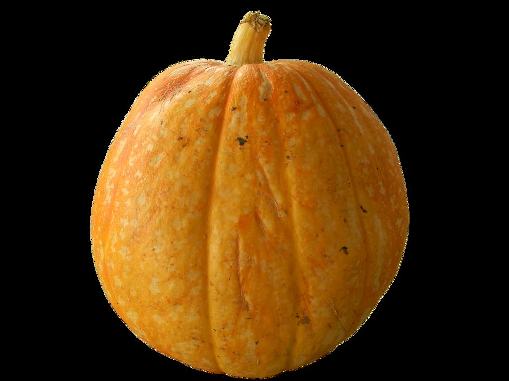 pumpkin png by rvs51
