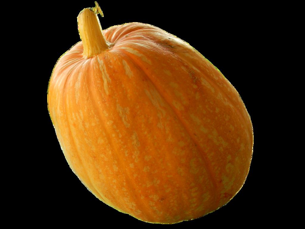 pumpkin png 2 by rvs51