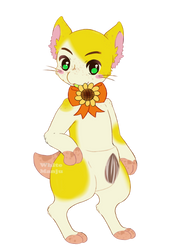 Clarose - Yellow Sunflower (OPEN)