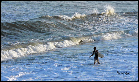 Japanese  Surfer