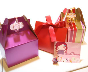 Valentine's gift boxes by colourful-blossom