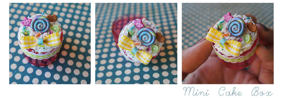 Mini Cake Box by colourful-blossom