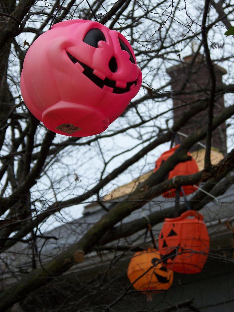 Pink Pumpkin 10/15/14 5:03 by Crigger