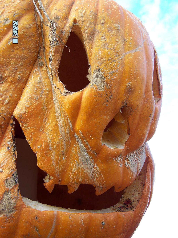 Millers Pumpkin Display,Waupaca WI 11/01/2014 4:21 by Crigger
