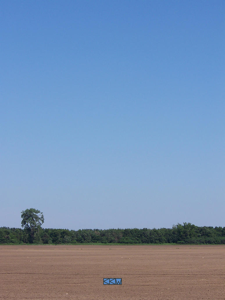 View from Plainfield, WI 06/09/2012 4:02PM by Crigger
