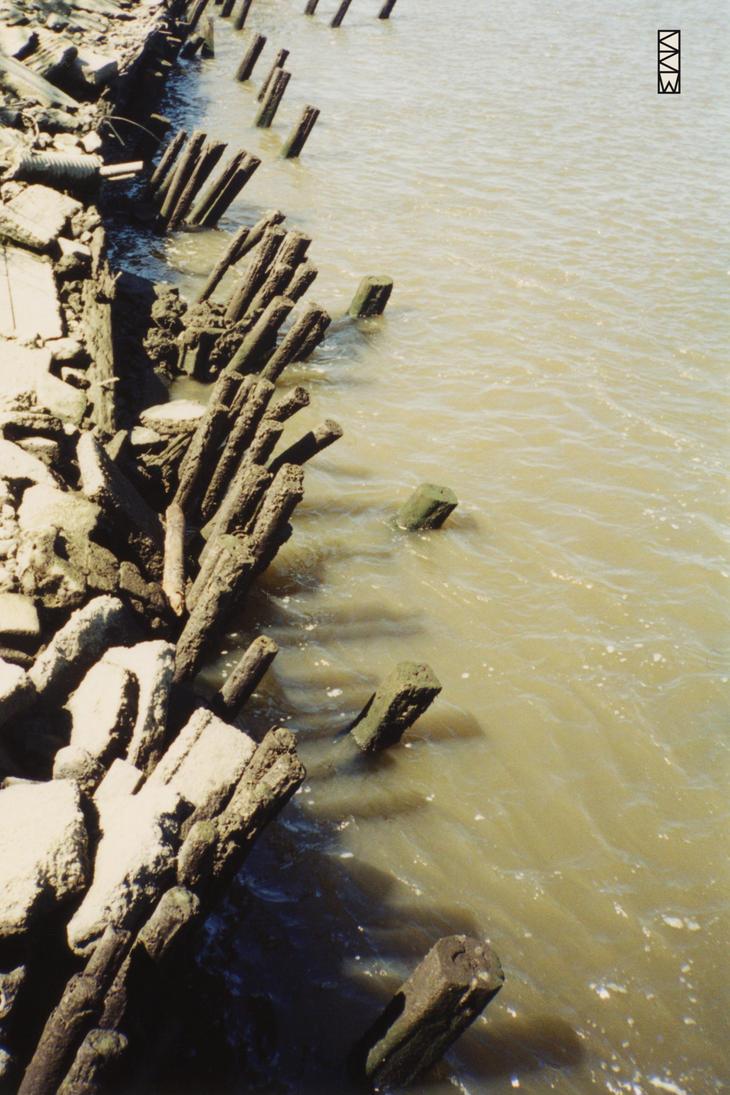 Edge along the Savannah River, Savannah, GA, aroun by Crigger