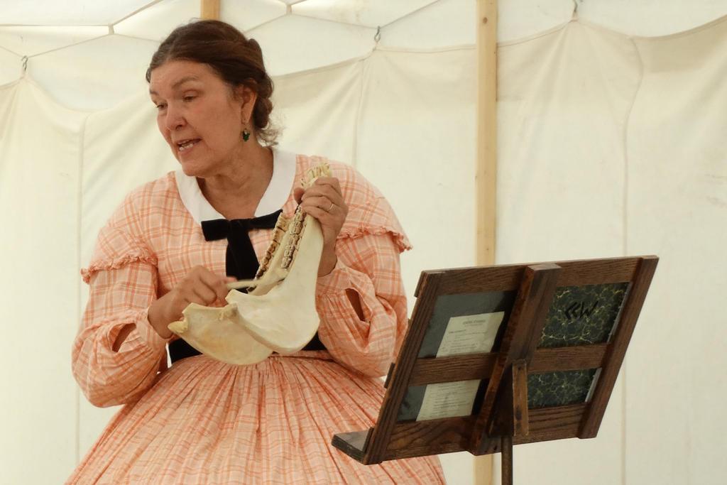 Authentic Civil War era bone playing re-enactor by Crigger