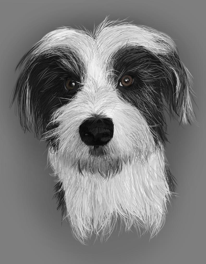 Harris Portrait by April-Nine
