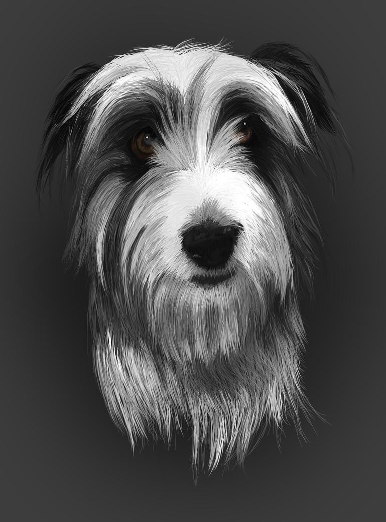 Tara Portrait by April-Nine