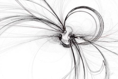 Spider by Maedusae