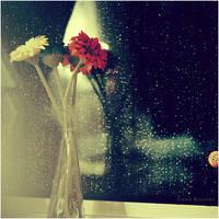 the rains :. by estellamestella