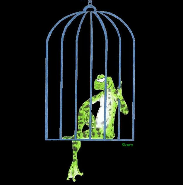 frog_in_a_cage_by_drakie229.jpg