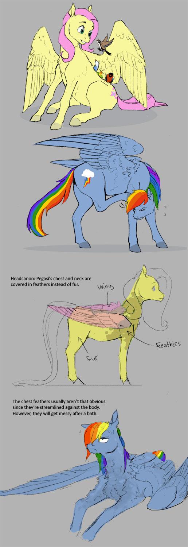 Pegasus ponies by Sayuri1314