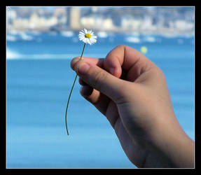 My hand,flower and beach by Saysamia