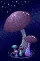 Mushrooms by Notecja