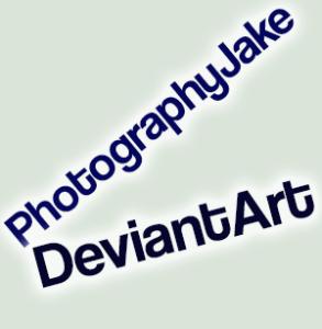 PhotographyJake's Profile Picture