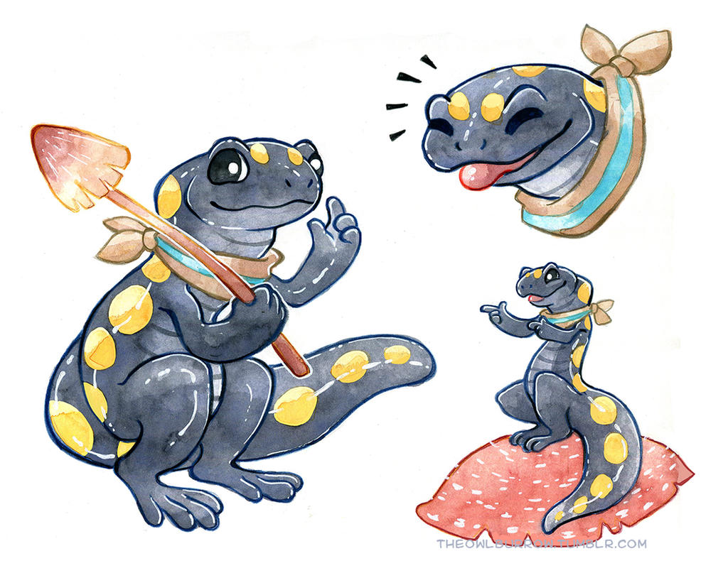 Spotted Salamander by owlburrow