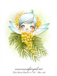 Fee Mimosa