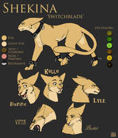 char sheet - Shekina by tigrin
