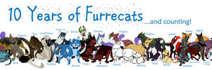 Furrecat 10th Anniversary
