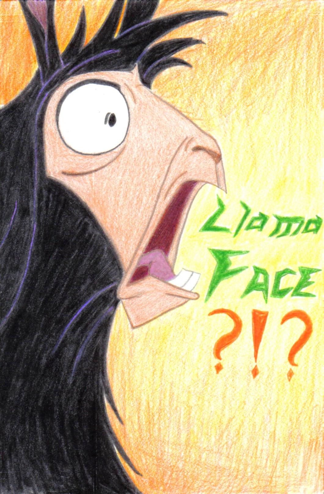 LLAMA FACE????? by lyanyne on DeviantArt