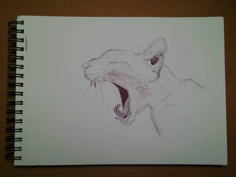 Screaming Cat