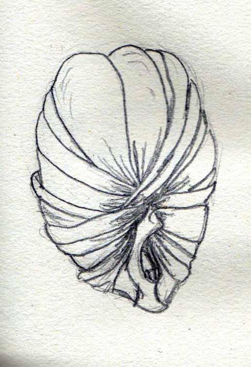 Wrapped face sketch by Felipe400