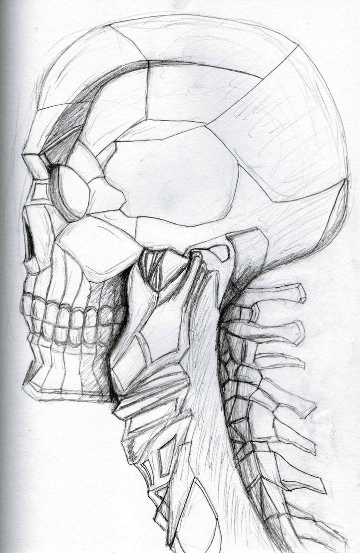 Cyborg skull sketch by Felipe400