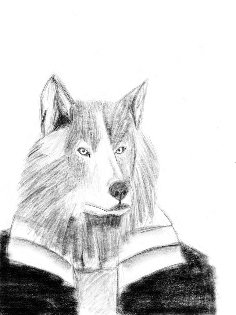 Wolf by Felipe400