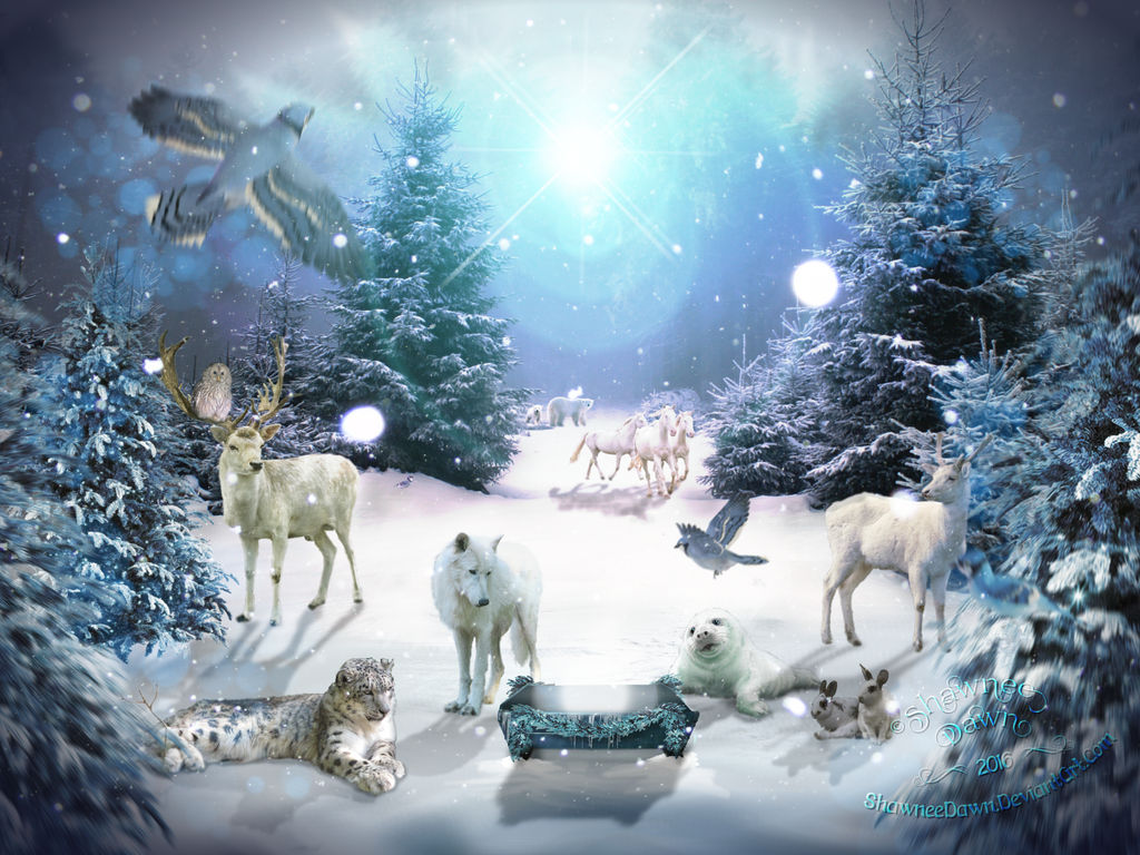 Christmas Gathering