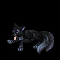 2 - Black pup by DarkHansol