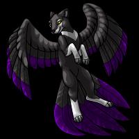 2 - Flyenx Adult Black by DarkHansol
