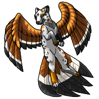 2 - Flyenx Adult calico by horselife1236