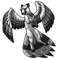 4 - Flyenx Adult achromatic by horselife1236