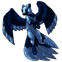 1 - Flyenx Adult Midnight by horselife1236