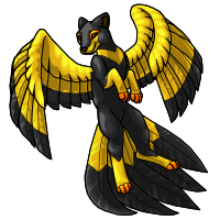 3 - Flyenx Adult Black and gold by horselife1236