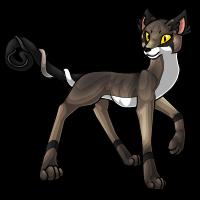 Trilx adult - Grey Fox by DarkHansol