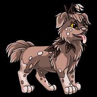 4 - Brown Adult by DarkHansol