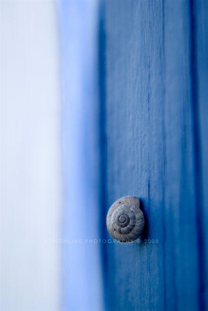 .: Solitude :.