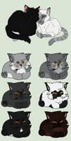 Kitten Adoptables: Closed