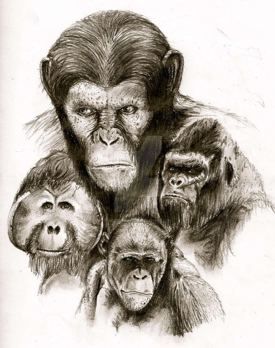 rise of the planet of the apes by jpizzle6298 on deviantart