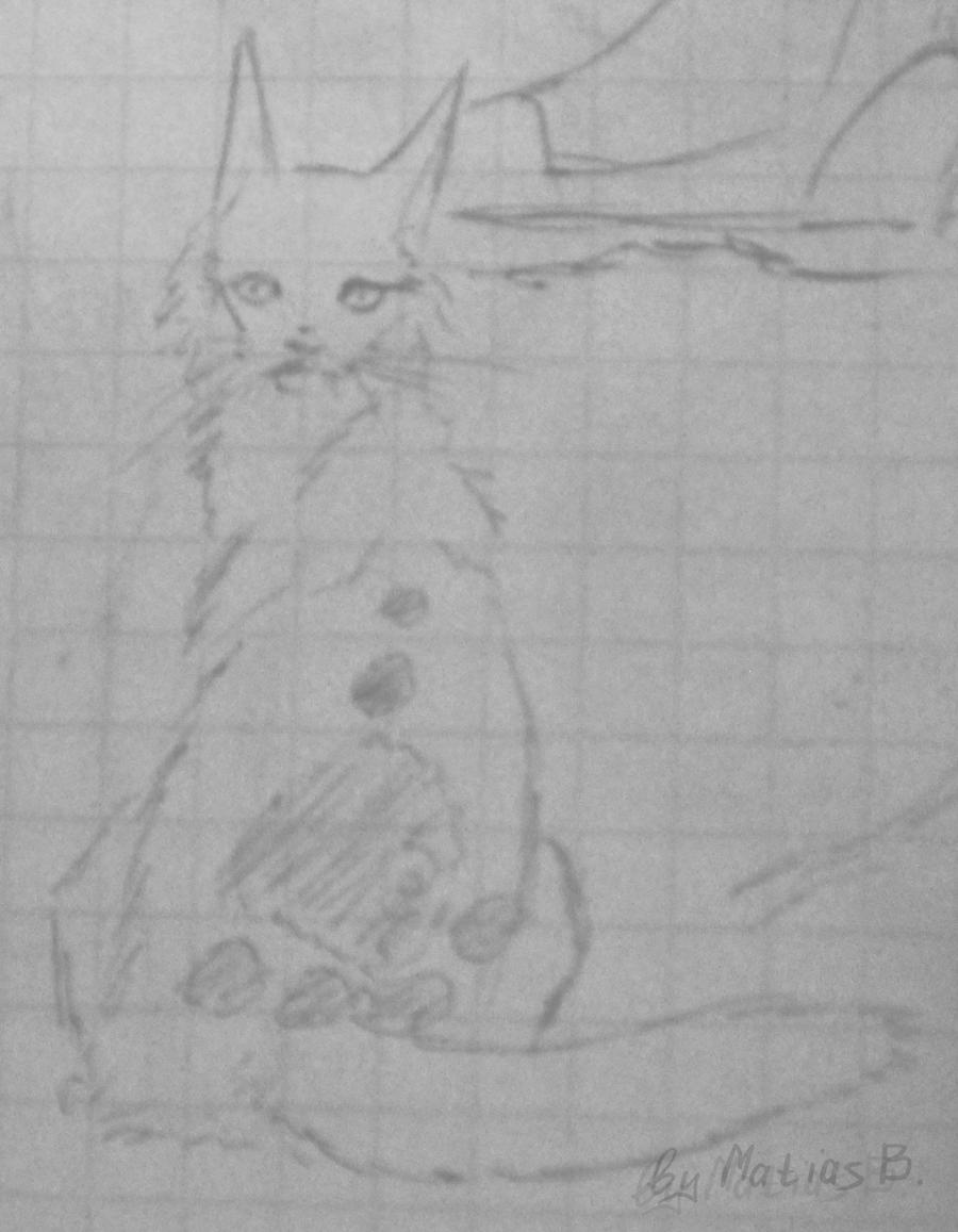 Cat by MatiasBloodbones