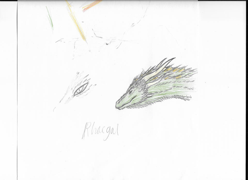 Rhaegal Sketch by quitra